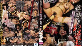 CMV-100 Kitajima Rei, Jav Censored