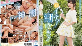 STAR-801 Kamisaka Hinano, Jav Censored