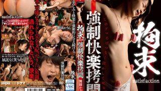 DDK-156 Compulsion Satisfaction Forced Pleasure Torture Mai Karin
