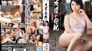 HTHD-143 Shirayama Youko, Jav Censored