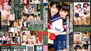 AVOP-378 My Sister And Parents Met After A Long Absence With My Parents' Incest …