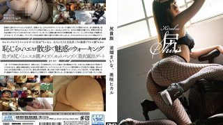 VGD-188 Hare Ark Nobility Noburo Misaki, Mika Hikaru