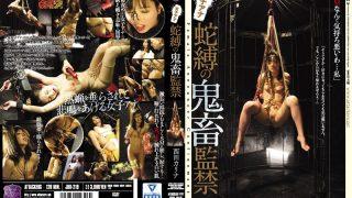 JBD-219 Nishita Karina, Jav Censored