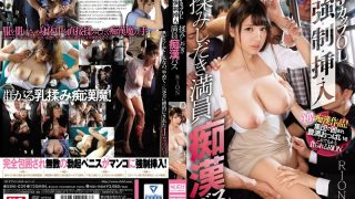 SSNI-029 J Cup OL Strong · Control · Insert · Input Troublesome Crowded Molester Bus RION