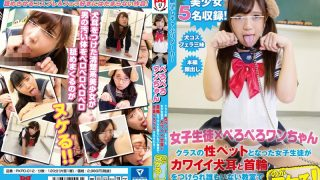 PKPD-012 【Girls Student × PERPETERO ONE CHANNEL】 Female Students Who Became Class Sex Pets Are Girls Wearing Kawaii Dogs Ears And Collars And They Are Made To Lick The Whole Body In The Classroom Where There Is No One!