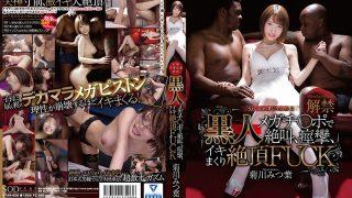 STAR-859 Kikugawa Mitsuba Black Megachi ● Screaming At The Po, Convulsions, Cum Shot Cum Heavy FUCK