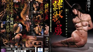 JBD-221 Yuri Momose, The Captive Of The Animal Beast