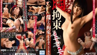 DDK-168 Legend Constraint Satisfaction Igarashi Star