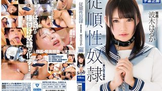 MDTM-348 Submissive Slave ~ Fair School Girl Student Haruka Haruka