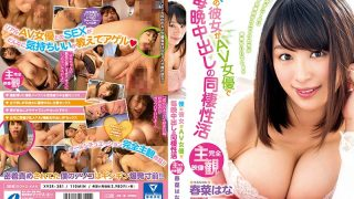 XVSR-381 My Girlfriend Is An AV Actress And Living Together With Her Every Night