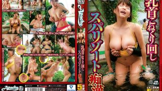AP-572 Nipple Turning Spindle Resort Molester