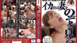 NSPS-736 Despair Fucking Husband Desire Husband Watching A Crazy Wife See! Tachibana Mary Ito Mio