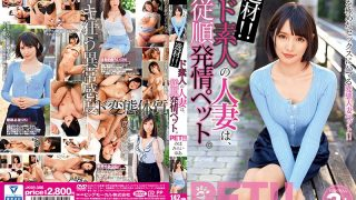 JKSR-356 Materials ! Daughter's Married Woman Is Obediently Estrus Pet.Miho Mirai Yu