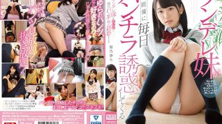 SSNI-308 Tsundere Younger Sister Tempted To Panickle Every Day To Defense Unexpected