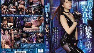 SHKD-816 Betrayed Investigator, Sakuragi Yuuki Sound Falling Into Pleasure