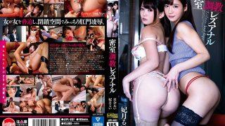 LZPL-037 Closed-room Torture Lesbian Anal Rui Satsuki Ai Sena