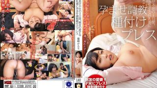 MADM-112 Husband Is Three Days Absent, Hatred By The Best Friend's Loving Big-breasted Wife Torture Seeding Press Kano Shinozaki