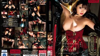 SALO-001 Akari Queen 39 s Training Room Shinmura Akari…