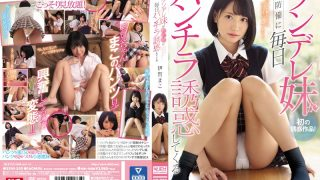 SSNI-550 Tsundere Younger Sister Is Tempted By Panchira Every Day Defenseless Mak…