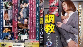 DRMP-003 Molester Trained OL Miyuki Nanako…