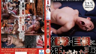 NSPS-854 Hotaru Mori Wife Mad By Shock And Big Cock…