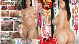 NIKM-031 The Treasure Of The AV World Huge Butt Sensation Queen Haruna …