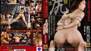GMA-006 Bondage Torture Wife Anal Completely Screaming Ascension Ascend…