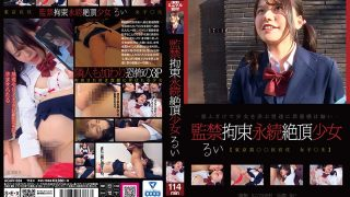 AGAV-024 Confinement Restraint Permanent Cum Girl Rui Otowa…