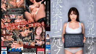 REAL-732 Haruna Kawakita A Prisoner Of Pleasure …