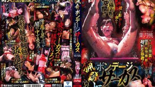 CMN-212 Bizarre Bondage Circus Tragedy Of Atrocious Female Leader Momo …