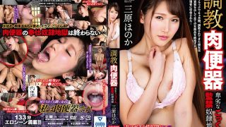 NEBB-0001 Torture Meat Urinal-Sneaky Cum Captivity Hell-Honoka Miha…