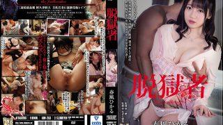 ADN-253 Jailbreak Hikaru Harukaze…