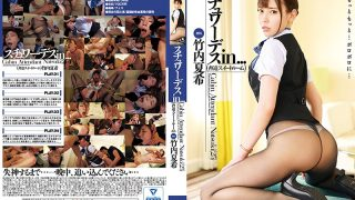VDD-165 Stewardess In Intimidation Suite Room Natsuki Takeuchi…
