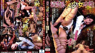 CMV-146 The Nature Of A Neat And Beautiful Girl Who Has Been Trained In…