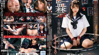 DDHH-020 Confinement-I Became A Male Sex Guy-Hikaru Minazuki…