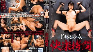 DDT-643 Restraint Girl Pleasure Torture Toyonaka Alice…