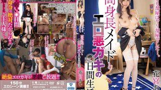 HODV-21554 Day Life Of Tall Maid And Erotic Evil Kid Amu Hanamiya…