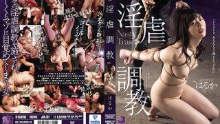 JBD-267 Nasty Training Haruka…