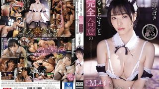 SSIS-082 Tsubaki Sannomiya For 2 Days Messed Up Until I Got Tired Of De…