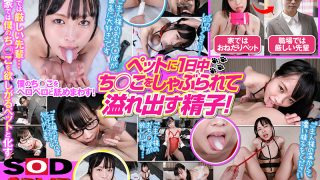 3DSVR-0958 performing in (VR) The Best Begging Pet … Every Day Gett …
